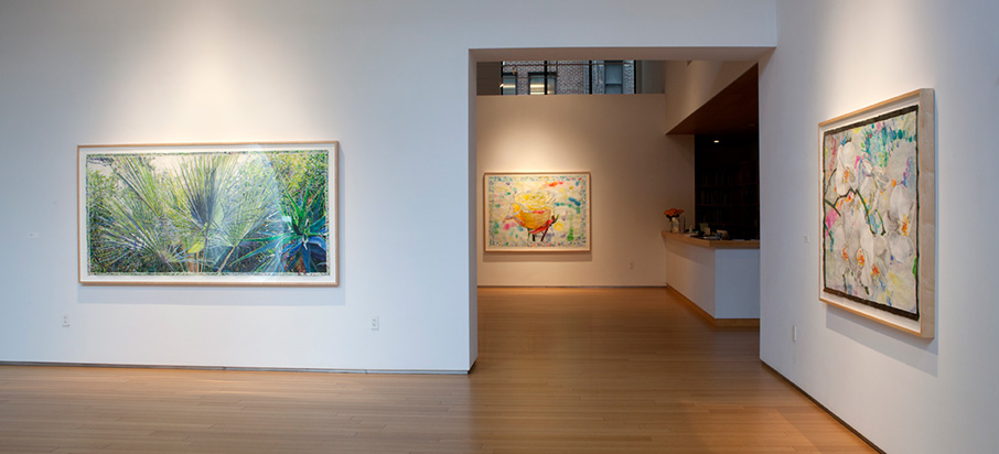 2015 Exhibition at the Nancy Hoffman Gallery