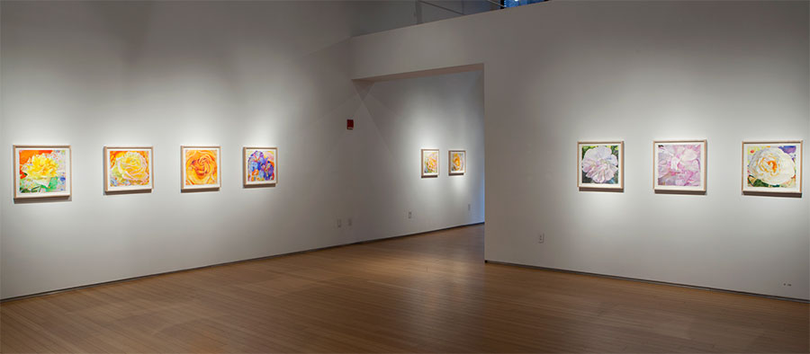 2017 Exhibition at the Nancy Hoffman Gallery