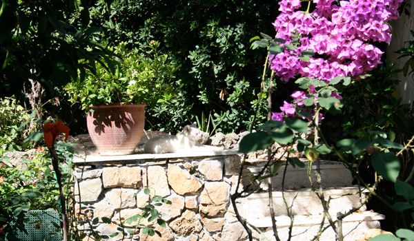Garden Walk outside the painting Studio of Joseph Raffael at Cap d'Antibes