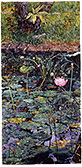 Bali Pond V - watercolor on paper painting by Joseph Raffael