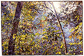 Friendship's Forrest - watercolor on paper painting by Joseph Raffael