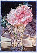 Peony - watercolor on paper painting by Joseph Raffael