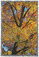 Autumn II - watercolor on paper painting by Joseph Raffael