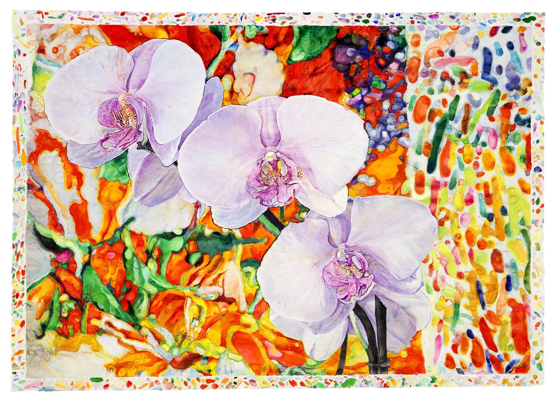 Orchids Dream - watercolor on paper by Joseph Raffael