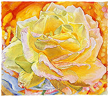 most recent watercolor painting - Dawn Rose by Joseph Raffael