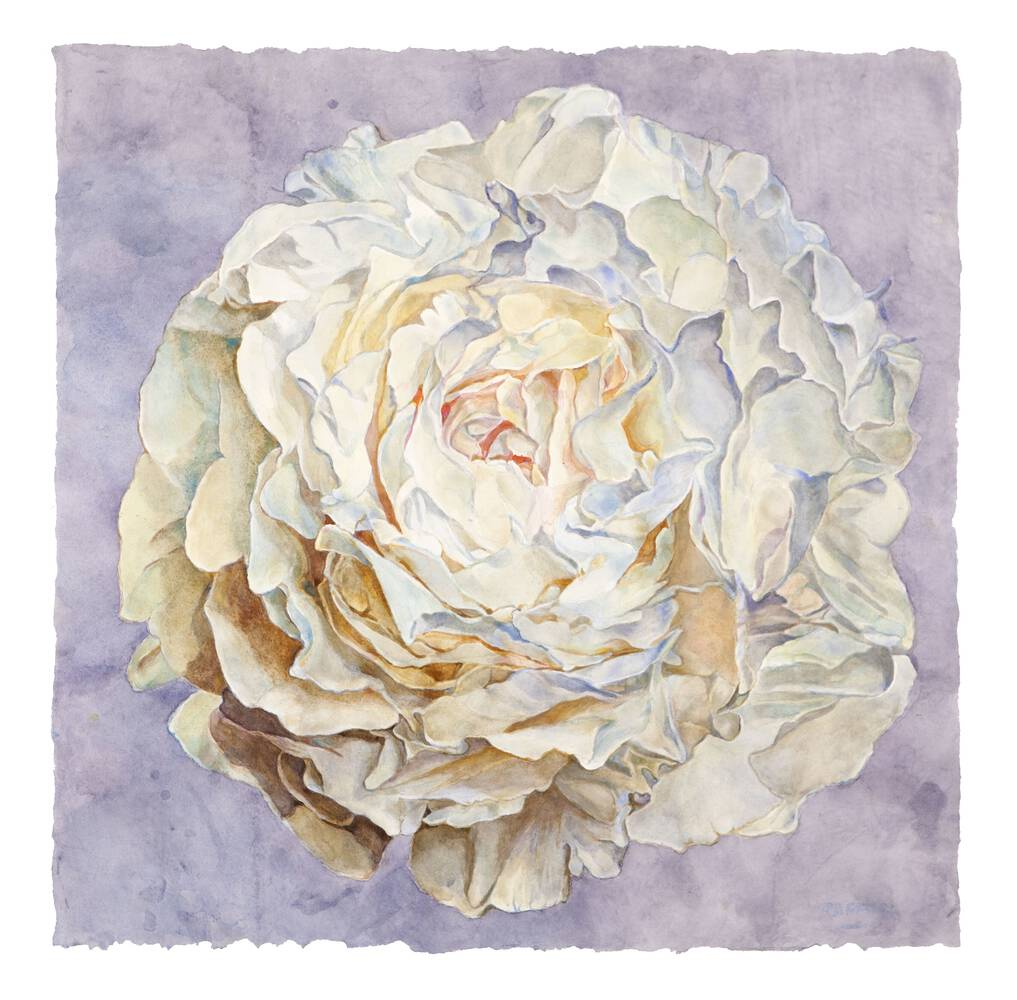 Untitled - watercolor on paper by Joseph Raffael