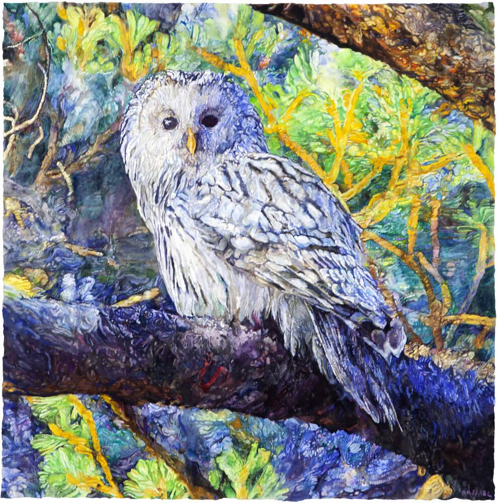 Owl - watercolor on paper by Joseph Raffael